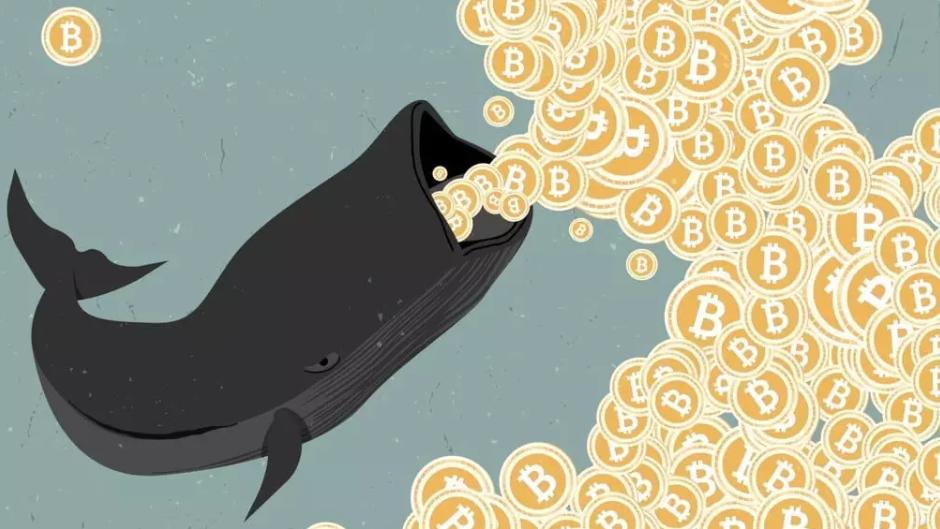 Volumen Ballenas Criptomonedas Bitcoin