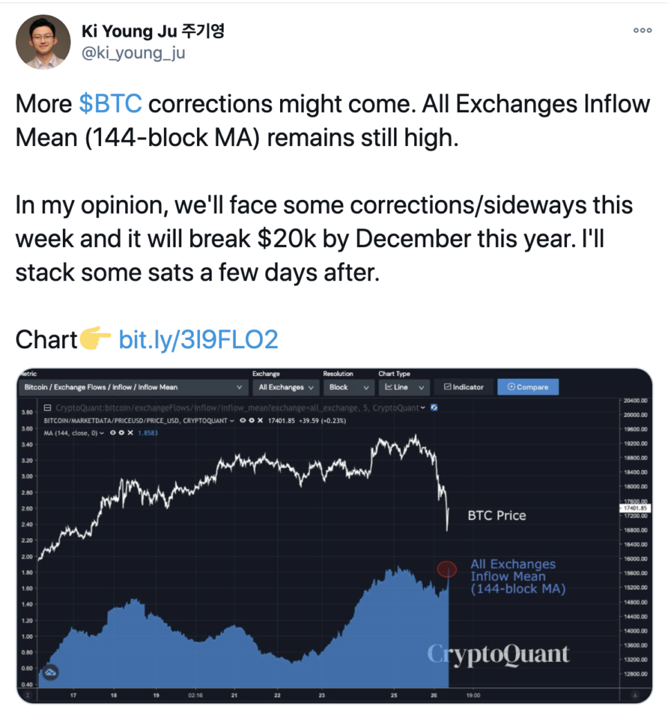 Opinion de baja de Bitcoin Ki Young Ju